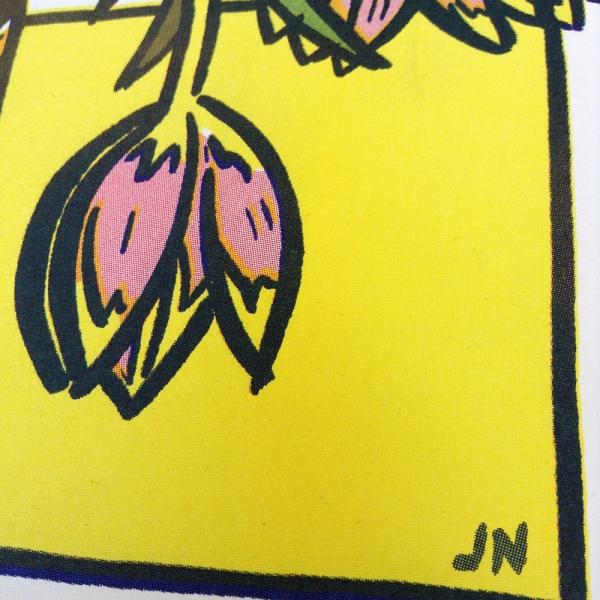 tulpen-2-detail